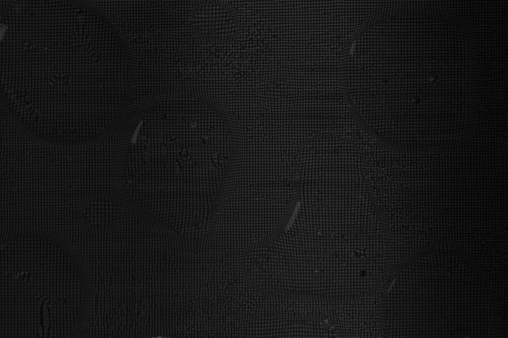 NydiaLilian_PixelsWB__NLC6381