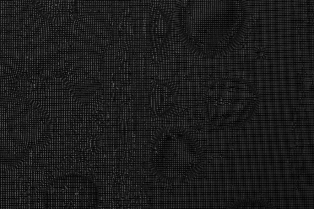 NydiaLilian_PixelsWB__NLC6382